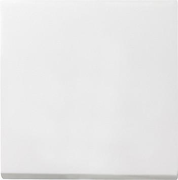Gira Schalterwippe System 55 reinweiß-matt 029627