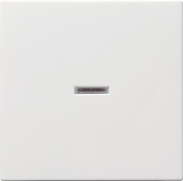 Gira Wippe mit Kontrollfenster System 55 reinweiß 029003